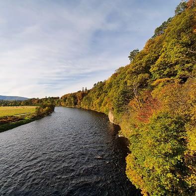 Prime fishing river
